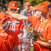 clemson-tiger-band-louisville-2016-91