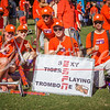 clemson-tiger-band-louisville-2016-2