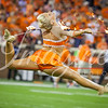clemson-tiger-band-louisville-2016-332
