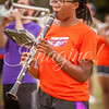clemson-tiger-band-ncstate-2016-98