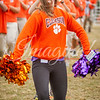 clemson-tiger-band-ncstate-2016-85