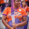 clemson-tiger-band-ncstate-2016-121