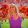 clemson-tiger-band-ncstate-2016-410