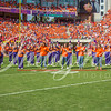 clemson-tiger-band-ncstate-2016-377
