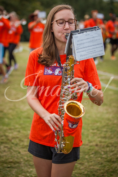 clemson-tiger-band-ncstate-2016-20