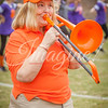 clemson-tiger-band-ncstate-2016-110