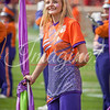 clemson-tiger-band-ncstate-2016-433