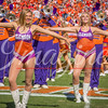 clemson-tiger-band-ncstate-2016-402