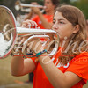 clemson-tiger-band-ncstate-2016-17