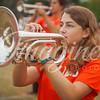 clemson-tiger-band-ncstate-2016-17