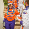 clemson-tiger-band-scstate-2016-75