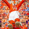 clemson-tiger-band-scstate-2016-403