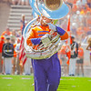 clemson-tiger-band-scstate-2016-274