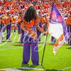 clemson-tiger-band-scstate-2016-297