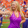 clemson-tiger-band-scstate-2016-376