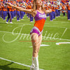 clemson-tiger-band-scstate-2016-280