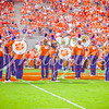 clemson-tiger-band-scstate-2016-269