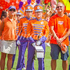clemson-tiger-band-scstate-2016-320