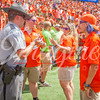 clemson-tiger-band-scstate-2016-357