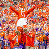 clemson-tiger-band-scstate-2016-402