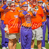 clemson-tiger-band-scstate-2016-316
