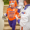 clemson-tiger-band-scstate-2016-76