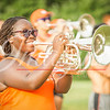 clemson-tiger-band-scstate-2016-16