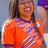 clemson-tiger-band-syracuse-2016-480