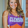 clemson-tiger-band-syracuse-2016-407