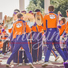 clemson-tiger-band-syracuse-2016-520