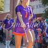 clemson-tiger-band-syracuse-2016-684