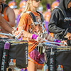 clemson-tiger-band-syracuse-2016-85