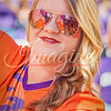 clemson-tiger-band-syracuse-2016-477