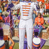 clemson-tiger-band-syracuse-2016-294