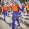 clemson-tiger-band-syracuse-2016-588