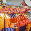 clemson-tiger-band-syracuse-2016-340