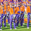 clemson-tiger-band-syracuse-2016-570