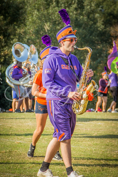 clemson-tiger-band-syracuse-2016-62