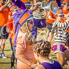 clemson-tiger-band-syracuse-2016-72
