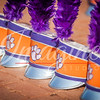 clemson-tiger-band-syracuse-2016-189