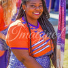 clemson-tiger-band-syracuse-2016-479