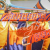 clemson-tiger-band-syracuse-2016-341