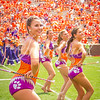 clemson-tiger-band-troy-2016-776