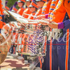 clemson-tiger-band-troy-2016-288