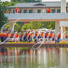 clemson-tiger-band-troy-2016-362