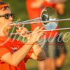 clemson-tiger-band-troy-2016-128