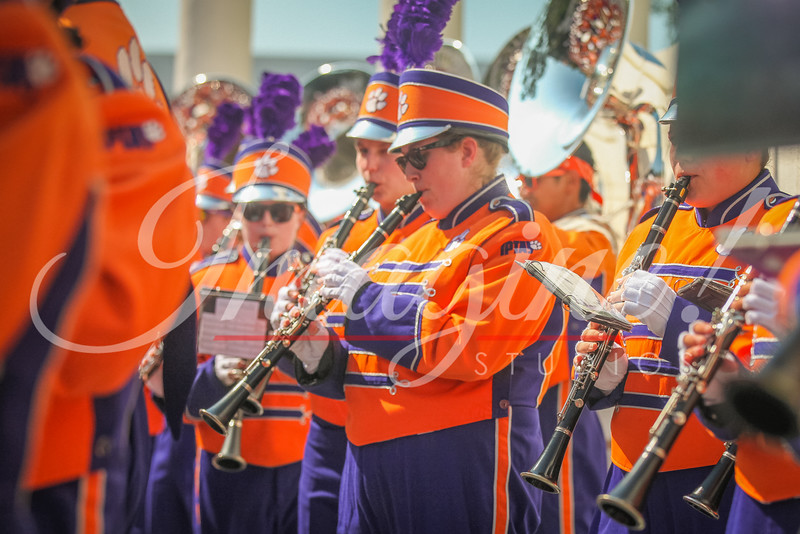 clemson-tiger-band-troy-2016-277