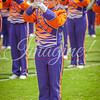 clemson-tiger-band-troy-2016-779