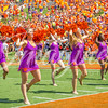 clemson-tiger-band-troy-2016-692