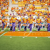 clemson-tiger-band-troy-2016-630